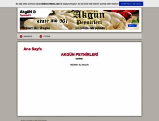 akgunpeynirleri.tr.gg screenshot