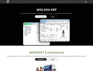 akinsoft.com screenshot