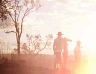 allianceabroad.com screenshot