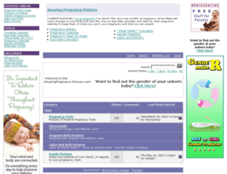 amazingpregnancy-pictures.com screenshot