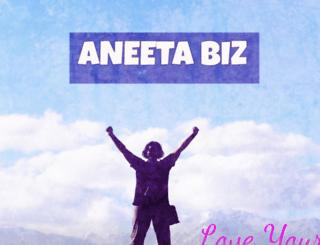 aneetabiz.com screenshot