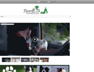 animalactors.ie screenshot