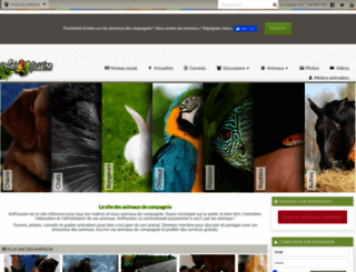 anipassion.com screenshot