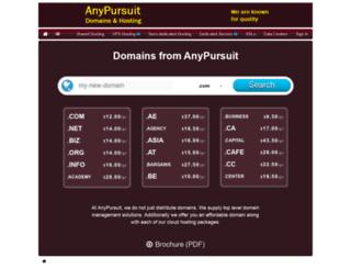 anypursuit.com screenshot