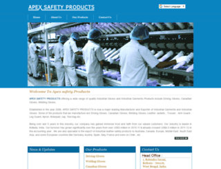 apexsafetyproducts.com screenshot
