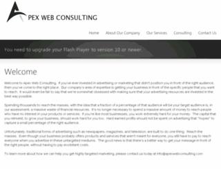 apexwebconsulting.com screenshot