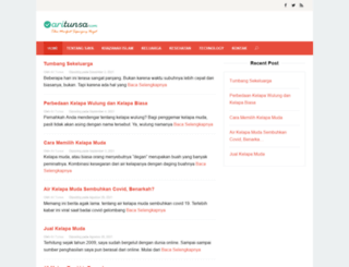 aritunsa.com screenshot