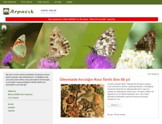 arpacik.net screenshot