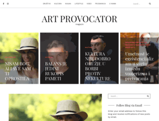 artprovocator.com screenshot