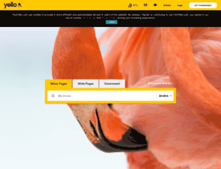 arubayp.com screenshot