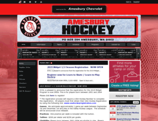 ayhl.org screenshot