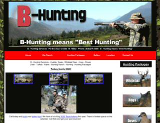 b-hunting.com screenshot