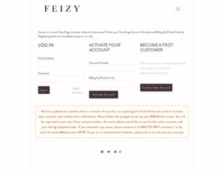 b2b.feizy.com screenshot