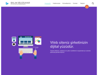 balakbilgisayar.com.tr screenshot