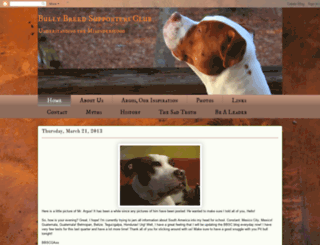 bbscga.blogspot.com screenshot