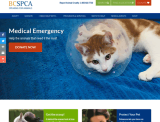 bcspca.ca screenshot