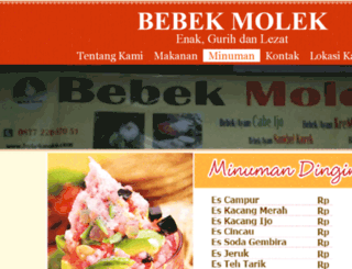 bebekmolek.com screenshot