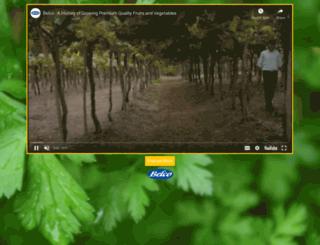 belco.com screenshot