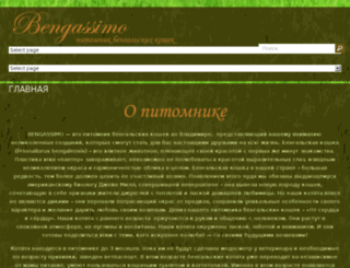 bengassimo.com screenshot