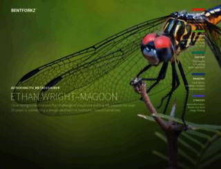 bentforkz.com screenshot