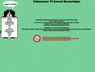 bernerhojen.dk screenshot