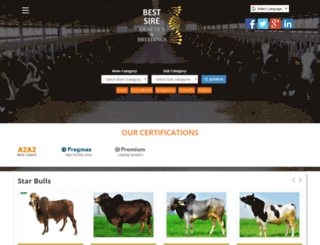 bestsire.com screenshot