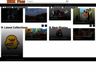 bhmpics.com screenshot