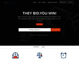 bidigniter.com screenshot
