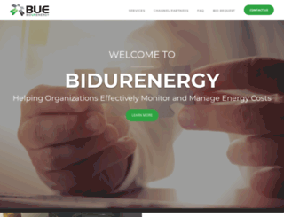 bidurenergy.com screenshot