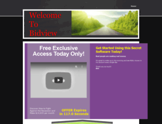 bidview.yolasite.com screenshot
