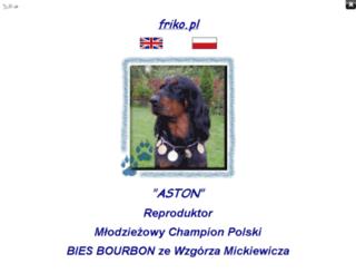 biesbourbon.friko.pl screenshot