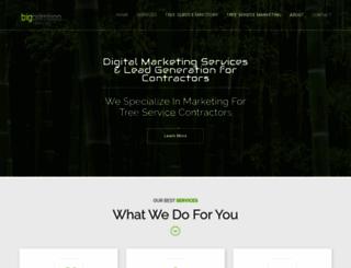 bigbamboomarketing.com screenshot