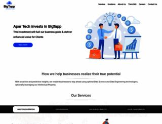 bigtappanalytics.com screenshot