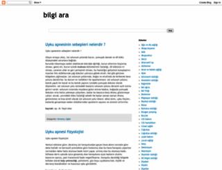bilgiara.com screenshot
