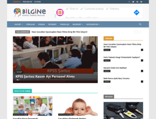 bilgine.net screenshot