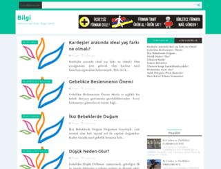 bilgitc.blogspot.com screenshot