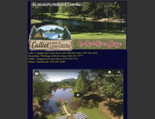 bilisimhukukukulubu.com screenshot