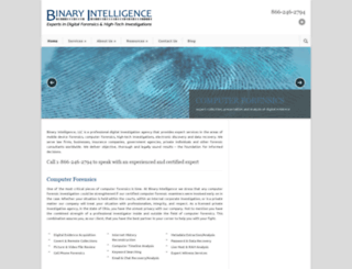 binaryintel.com screenshot