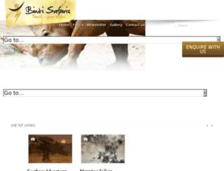 bintisafaris.com screenshot