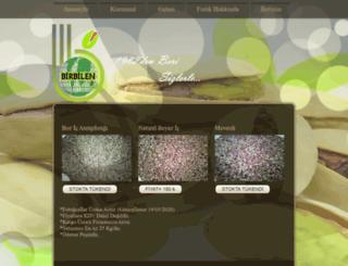 birbilengida.com screenshot