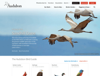 birds.audubon.org screenshot