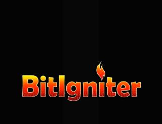 bitigniter.com screenshot