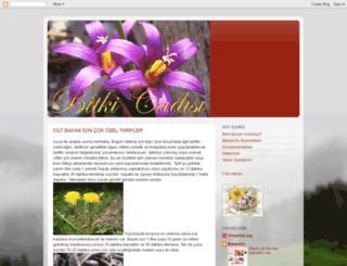 bitkicadisi.blogspot.com screenshot