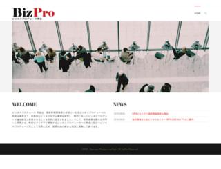 biz-pro.org screenshot