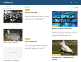 biznesok.pl screenshot