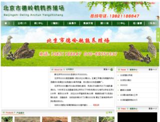 bjanchun.com screenshot