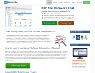 bkf-file-recovery.wordrecovery.net screenshot