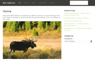 blairseabrook.com screenshot