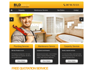 bldcontractors.ie screenshot
