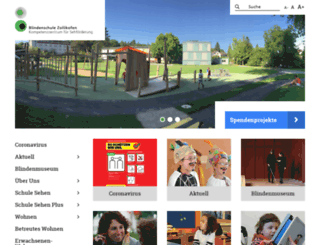 blindenschule.ch screenshot